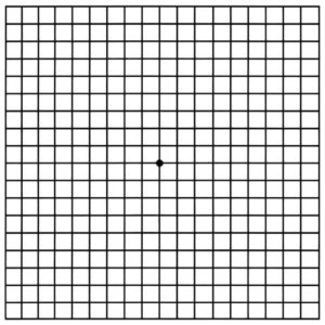 small grid box for detecting vision loss from AMD